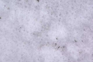 Snow terrain 0014