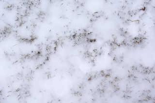 Snow terrain 0023