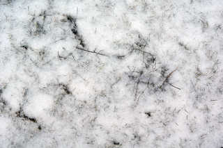 Snow terrain 0034