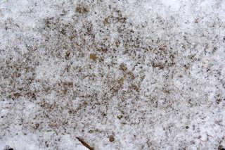 Snow terrain 0040