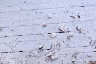 Snow terrain 0063