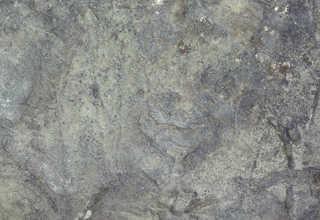 Solid rock terrain 0009