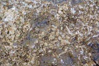 Solid rock terrain 0011