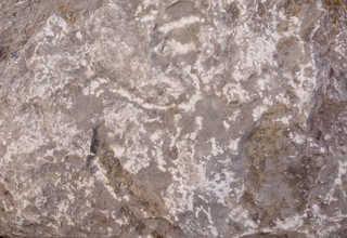 Solid rock terrain 0032