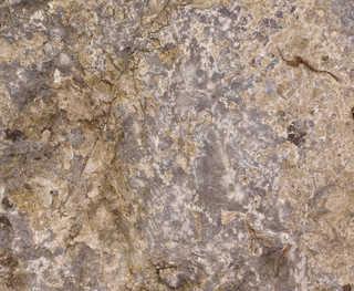 Solid rock terrain 0037