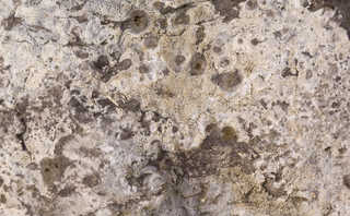 Solid rock terrain 0038