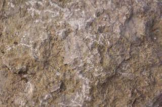 Solid rock terrain 0041