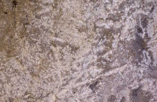 Solid rock terrain 0043