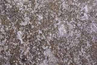 Solid rock terrain 0045