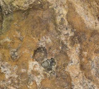 Solid rock terrain 0051