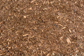 Wood chip terrain 0010