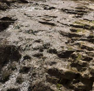 Foam and rapids 0026