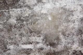 Ice 0037
