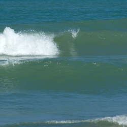 Waves Category