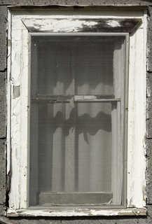 House windows 0004