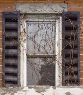 shutters_0021 texture