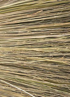 Hay and straw 0005