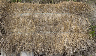 Hay and straw 0015