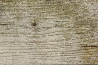 Laminated and wood grain 0019