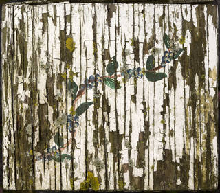 Painted and peeling wood 0027