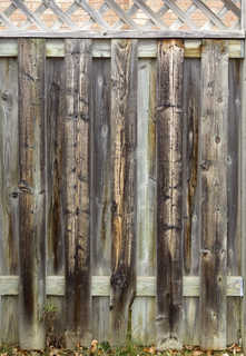 Wood fences 0017