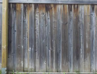 wood-fences_0050 texture