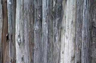 wood-fences_0059 texture