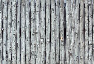 Texture of /wood/wood-fences/wood-fences_0064_02