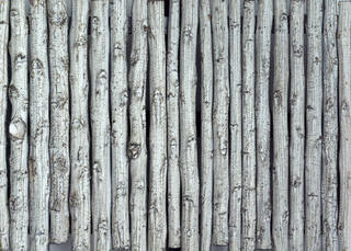 Texture of /wood/wood-fences/wood-fences_0064_03