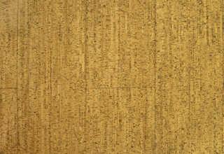Wood floors 0008