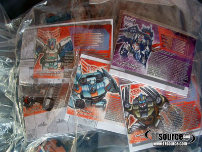 Botcon 2009 Wings of Honor Loose Set