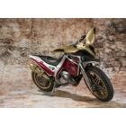 Kamen Rider Kuuga - Trychaser 2000 motorcycle
