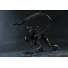 S.H.MonsterArts - Alien Warrior