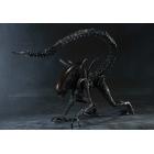 S.H.MonsterArts - Alien Warrior