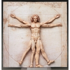 Figma - Table Museum - The Vitruvian Man