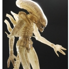 NECA - 1/4 Translucent Prototype Alien Figure