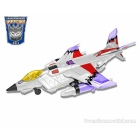 Botcon 2013 - Termination - Skywarp