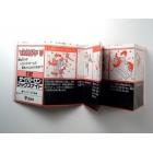Instruction Manual - C-312 - Sixknight Japanese - Grade B