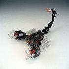 ROTF - Stalker Scorponok - Loose - 100% Complete
