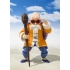 Dragon Ball S.H. Figuarts Master Roshi