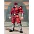 S.H.Figuarts - Street Fighter  - M. Bison
