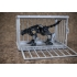 Mastermind Creations - Ocular Max RDMX-01 Plus Jaguar Cage