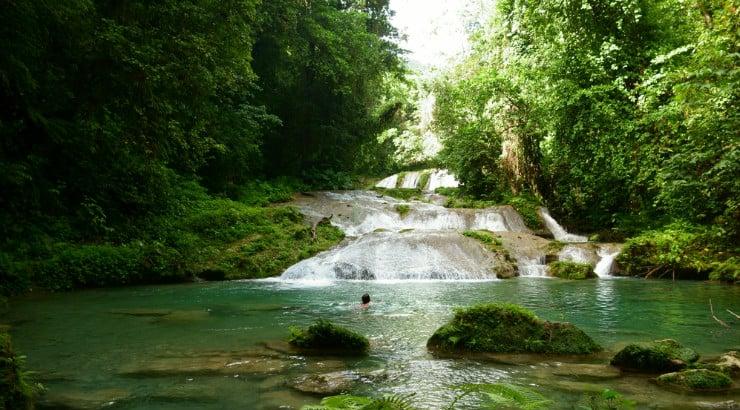 Roaring River Park Negril Jamaica