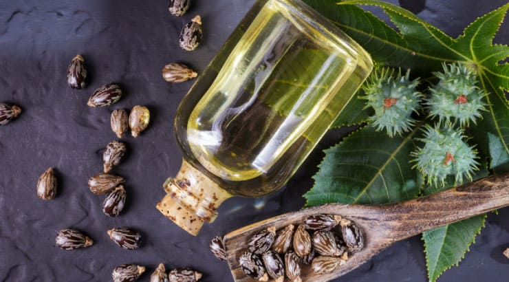 Sunny Isle Jamaican Black Castor Oil Uses Castor Oil in Their Products to Hydrate Your Skin