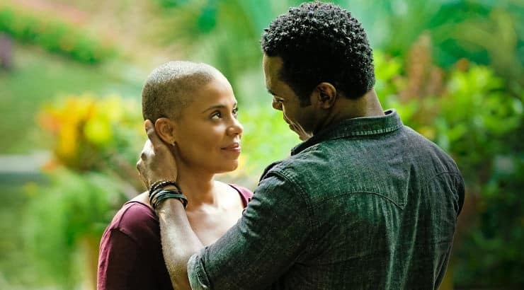 Nappily Ever After is a romantic comedy about a young black woman who learned to love herself above all the superficial views of society.