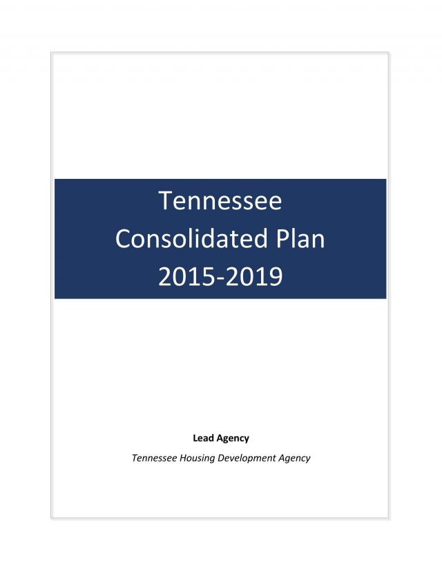 2015-2019 Draft Consolidated Plan