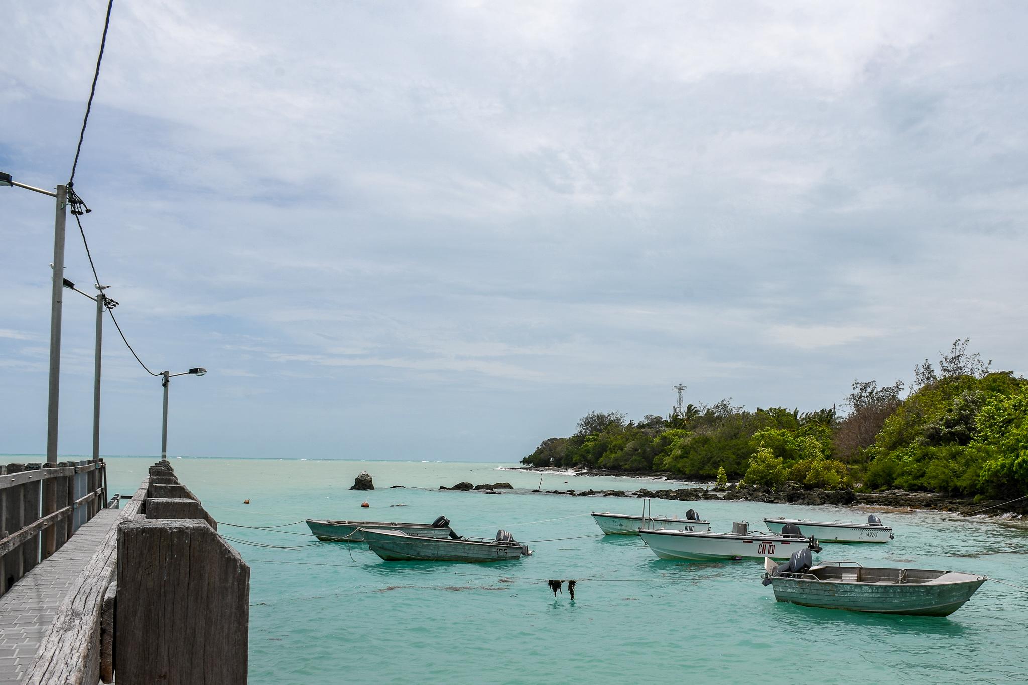 Coronavirus hits Torres Strait's traditional fishers as rock lobster market hits rock bottom