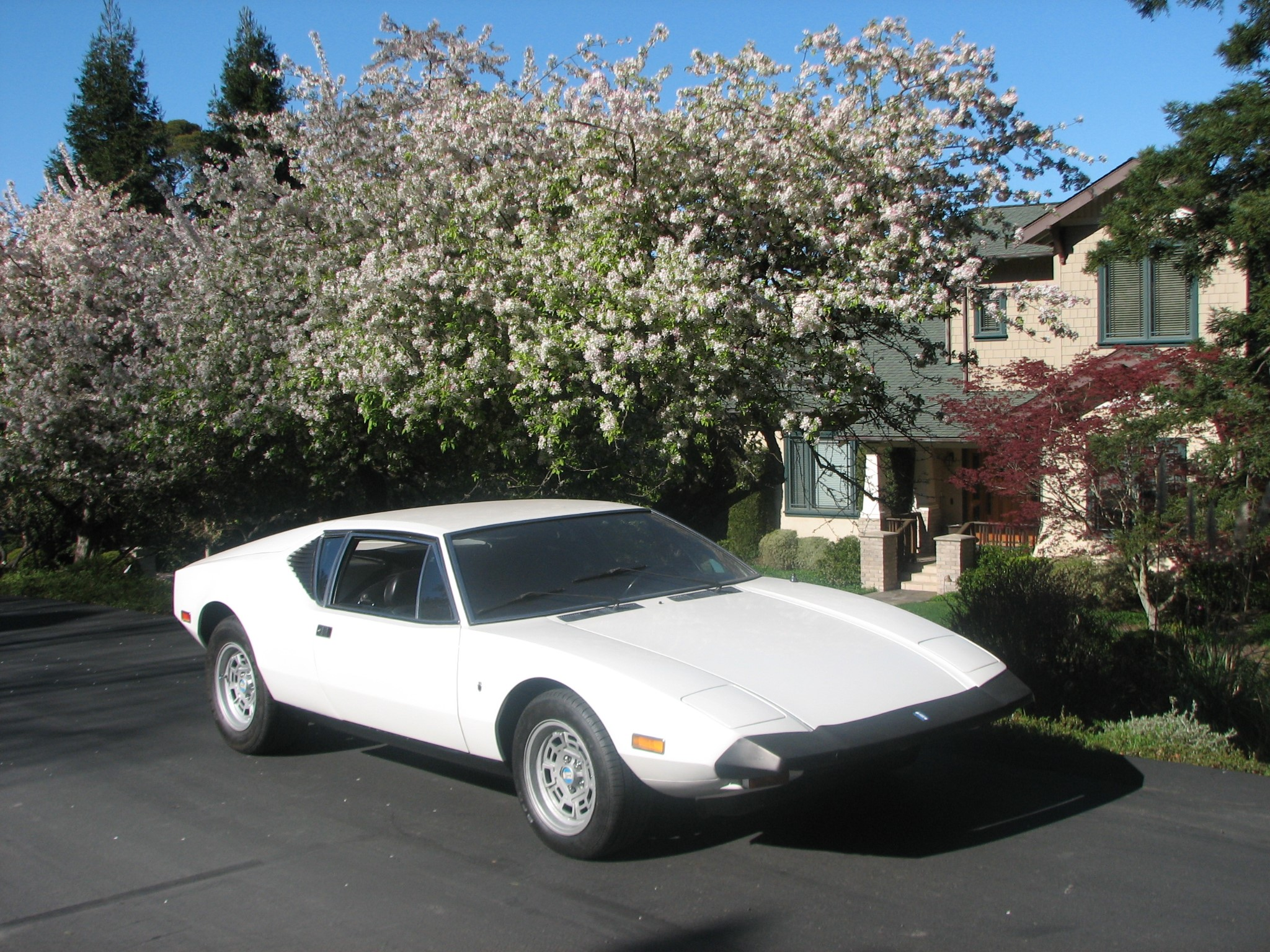 This 1973 De Tomaso Pantera Could Be Your Boutique Brute - The Drive