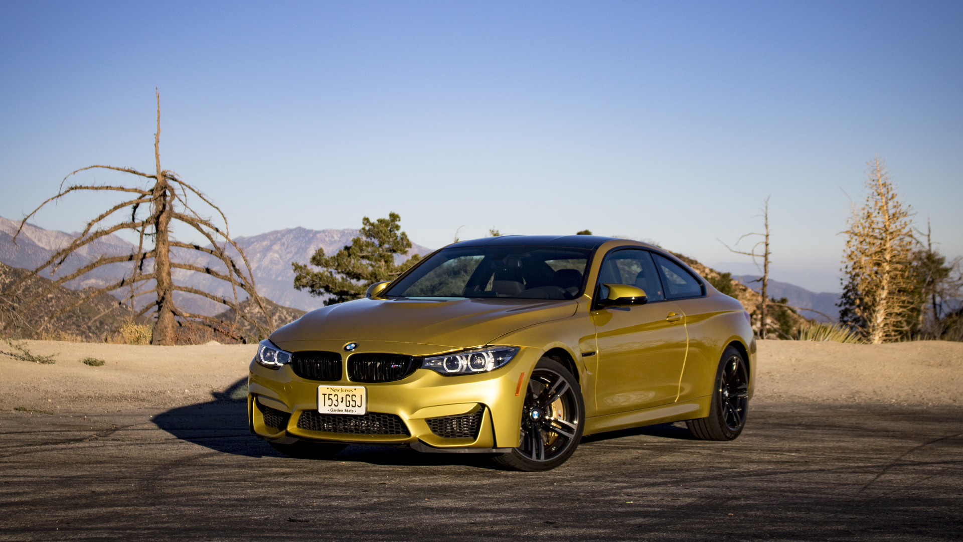 2018 BMW M4 Test Drive Review: The Gold Standard Holds Its Luster