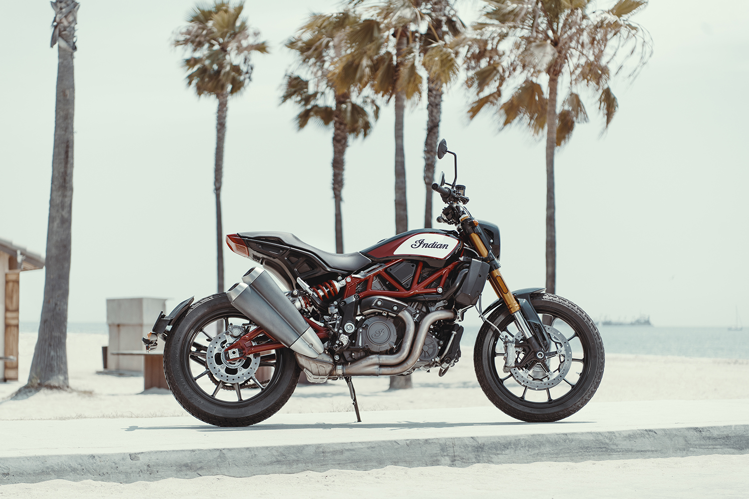 2019 Indian FTR 1200 and FTR 1200 S: Indian\'s Flat Track Inspired ...